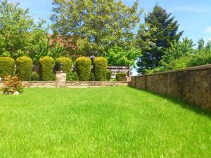 meadow_garden_summer